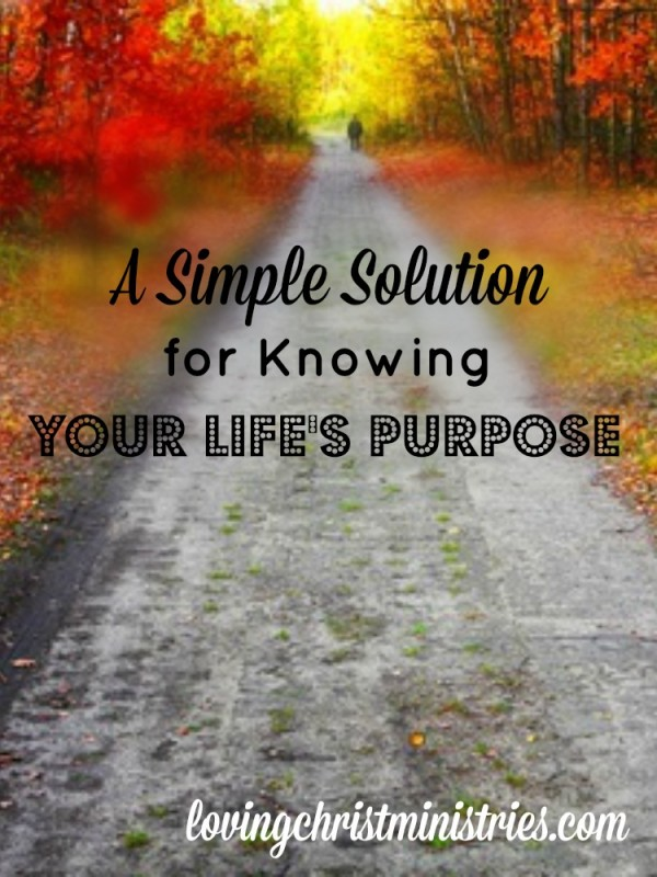 The facets of our lives make up the whole of our existence, but what truly is the reason we're here? Knowing life's purpose doesn't have to be difficult.